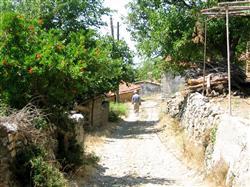 villageMountIda